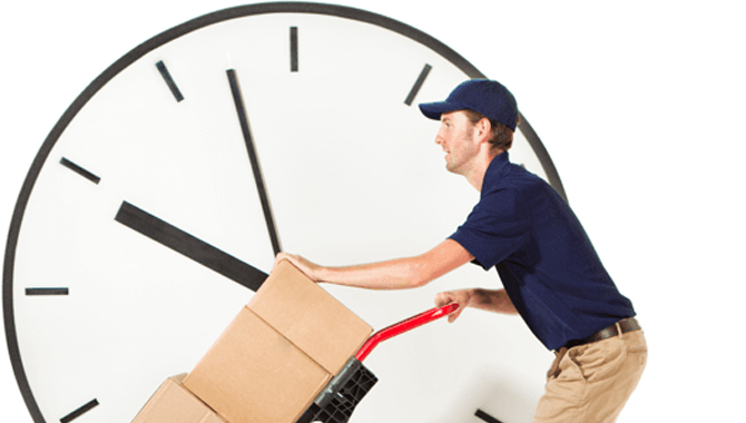 Other Mail Delivery Service Times