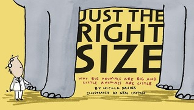 Right Size