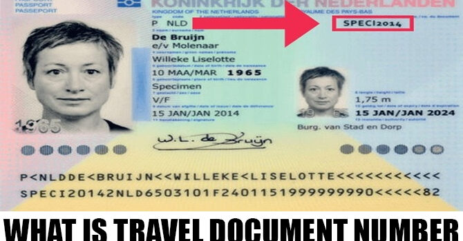What is travel document number